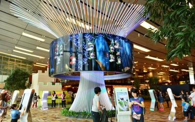Fun with Social tree at Changi Airport, Singapore - Flamingo Travels